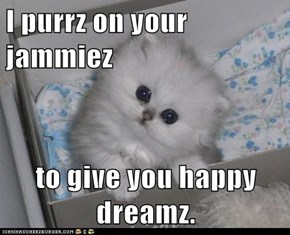 I purrz on your jammiez  to give you happy dreamz.