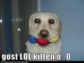 ^ gost LOL kitten o_0