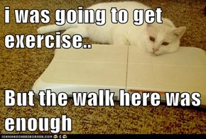 i was going to get exercise...