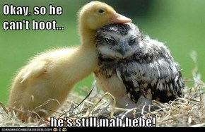 Okay, so he                                                       can't hoot...  he's still mah bebe!