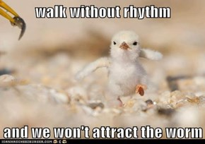 walk without rhythm  and we won't attract the worm