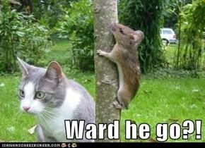 Ward he go?!