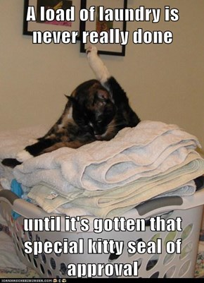 A load of laundry is never really done  until it's gotten that special kitty seal of approval