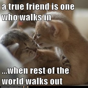 a true friend is one who walks in