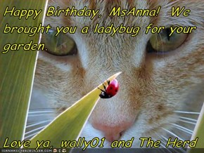Happy Birthday, MsAnna!  We brought you a ladybug for your garden.  Love ya, wally01 and The Herd