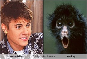 Justin Beiber Totally Looks Like Monkey