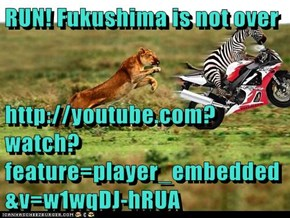 RUN! Fukushima is not over  http://youtube.com?watch?feature=player_embedded&v=w1wqDJ-hRUA