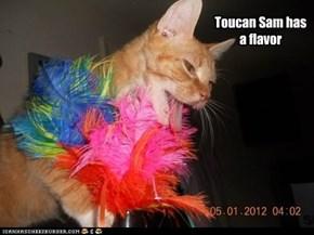 Toucan Sam has a flavor