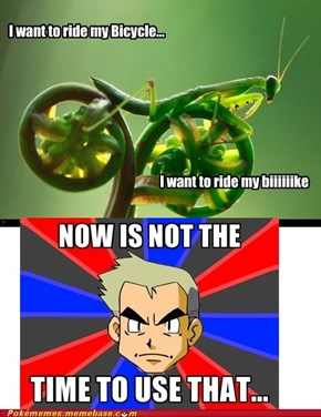 Professor Oak knows best