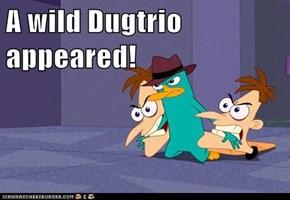 A wild Dugtrio appeared!