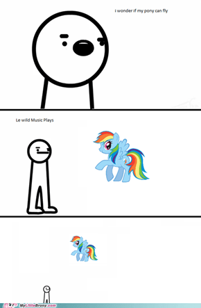I Wonder that My Pony can Fly
