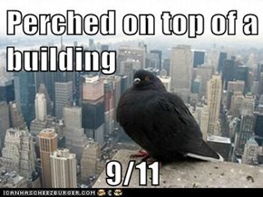 Perched on top of a building  9/11