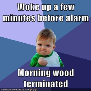Woke up a few minutes before alarm  Morning wood terminated