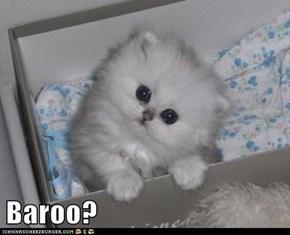 Baroo?