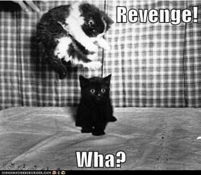 Revenge!  Wha?