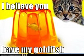 I believe you   have my goldfish
