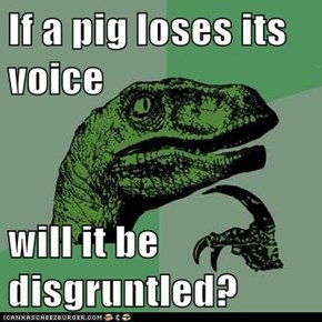If a pig loses its voice  will it be disgruntled?