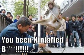 You been Ninjafied B****!!!!!!