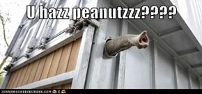 U hazz peanutzzz????