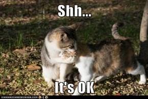 Shh...  It's OK