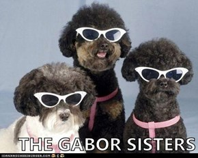THE GABOR SISTERS