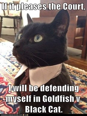 If it pleases the Court,  I will be defending myself in Goldfish v. Black Cat.