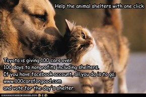 Help the animal shelters with one click