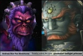 Andross Star Fox Adventures Totally Looks Like ganondorf twilight princess