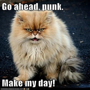 Go ahead, punk.  Make my day!