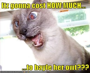 Itz gonna cost HOW MUCH...  ...to bayle her owt???