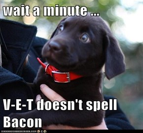 wait a minute ...  V-E-T doesn't spell Bacon
