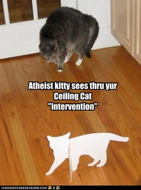 "Atheist kitty sees thru yur Ceiling Cat ""intervention"""