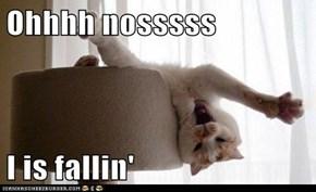 Ohhhh nosssss  I is fallin'