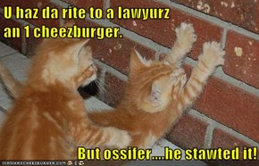 U haz da rite to a lawyurz                               an 1 cheezburger.   But ossifer....he stawted it!