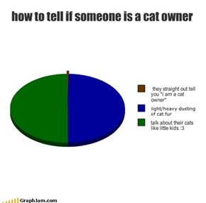 how to tell if someone is a cat owner