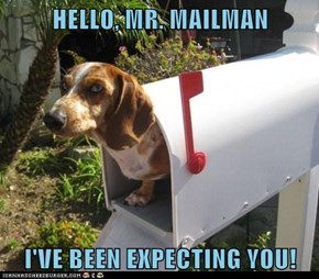 HELLO, MR. MAILMAN  I'VE BEEN EXPECTING YOU!