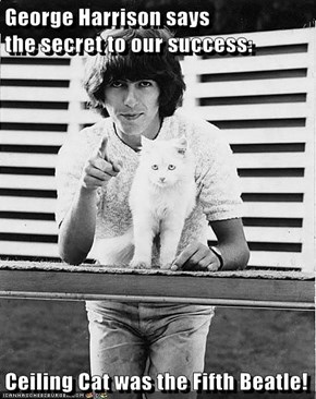 George Harrison says                      the secret to our success:       Ceiling Cat was the Fifth Beatle!