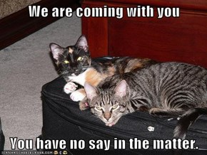 We are coming with you  You have no say in the matter.