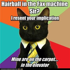 Hairball in the Fax machine Sir?