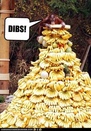 DIBS!