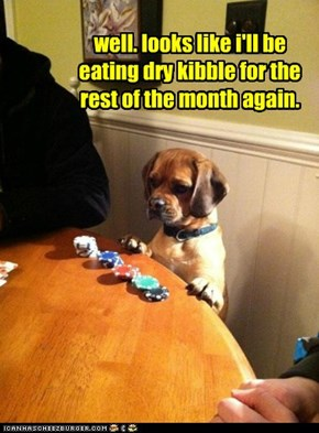 well. looks like i'll be eating dry kibble for the rest of the month again.