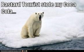 Bastard Tourist stole my Coca Cola...