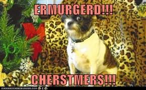 ERMURGERD!!!  CHERSTMERS!!!
