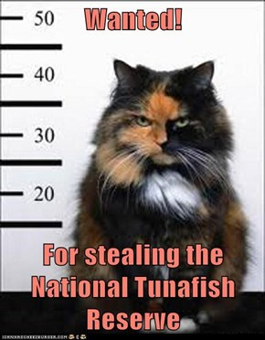 Wanted!  For stealing the National Tunafish Reserve