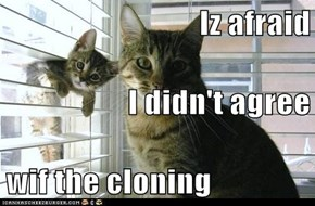 Iz afraid I didn't agree wif the cloning