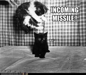 Missile Kitten
