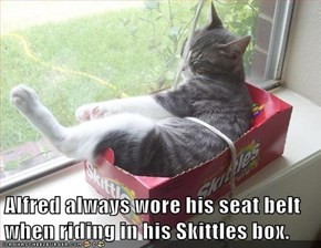 Alfred always wore his seat belt when riding in his Skittles box.