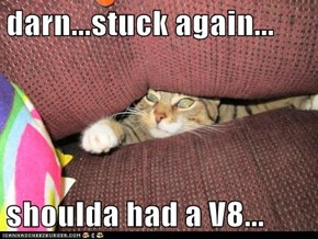 darn...stuck again...  shoulda had a V8...