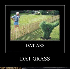 DAT GRASS