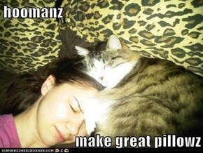 hoomanz  make great pillowz